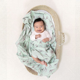 SLEEPY STARS ADEN+ANAIS SWADDLE